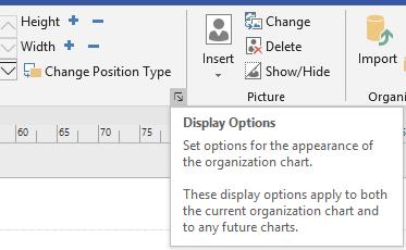 Display options dialog box